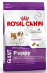 Royal Canin Giant Puppy ����� ���� ��� ������ ���������� ����� �� 2 �� 8 �������  4 ��. (195040)